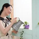 花に水をやる女性